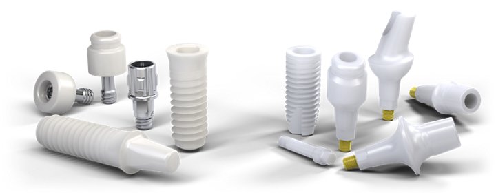 Straumann Ceramic Implant Systems